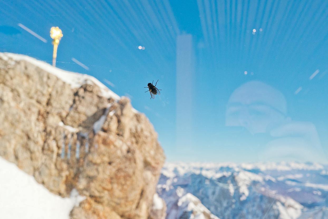 Gipfel – Zugspitze